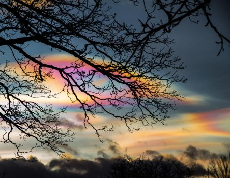 Magical polar stratospheric clouds new years eve by jannelisabeth