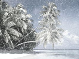 Winter paradise by The-proffesional