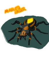 Animal works: Masked Spider by ShadersHQ