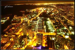 view from CN tower, TORONTO 2 by dumantk