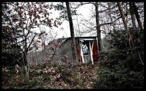 Old Shack in the Woods by LugburzOxay