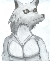 Graphite Anoroth by Anoroth-the-wolf