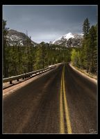 Trail Ridge Road by danheacock