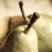 Pears in pair by ElkeF