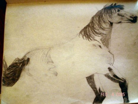 Unfinished Rearing Horse by wildcatskye