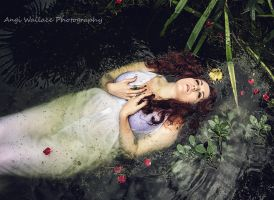 Ophelias dream by AngiWallace