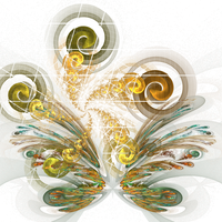 Butterfly + Spiral by turon-marcano