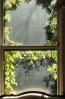 Dreaming Window by MoreThanNothing
