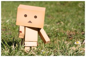 danbo with a lady beetle by sp333d1