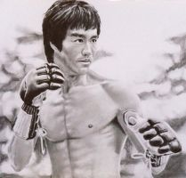Bruce Lee - Enter The Dragon by mickoc