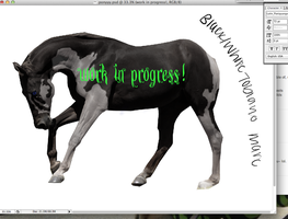WIP: blk/white tobiano by MiddysGraphics