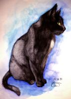 Aquarell Cat by whitecrestwaves