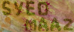 My name on leaves by syedmaaz
