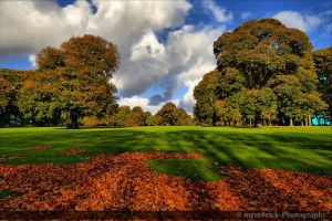 Autumn In The Park 0488o by mym8rick