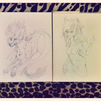.:Commission WIP - Feral Vs. Anthro:. by Zikki-chan