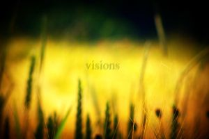 visions by Anshelm