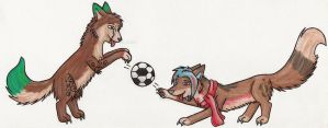 Prize: Soccer Game by risha