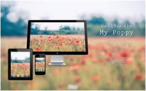 WallBundle 3 : My Poppy by songe