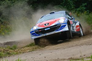 Orlen Rally 2008 _3_ by schwepes