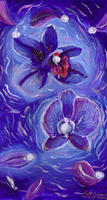Blue Orchids by jekylnhyde