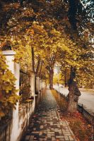 Warm autumn on the way home by Cvet04ek
