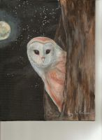 Owl! by 3ampainter