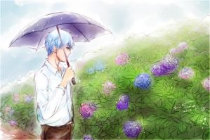 KUROKO - Rain of June by Sa-do