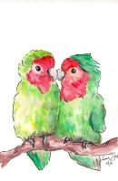 Lovebirds by StCoraline