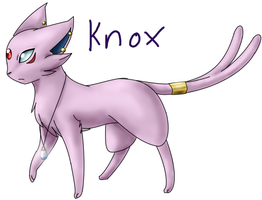 PMD Tournament- Knox by Fire-Girl872