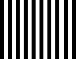 The best stripes by Francilla