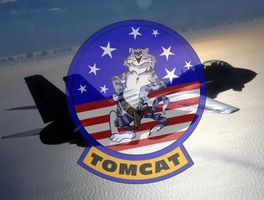 F-14 Tomcat Wallpaper by viperaviator