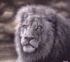 My Lion, using pastels by AngelaMaySmith