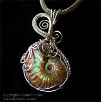Tidal Swirls Ammonite by Nambroth