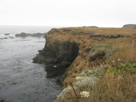 Mendocino Cliffs 3 by itskokosfault