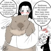 Hashi and the wombat by YumeSamasLover