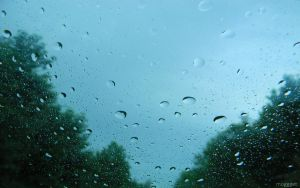 Rainy Day Wallpaper Series 3 out of 7 by MOGGGET