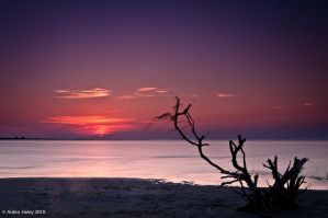 Pamlico Sound Sunset 2 by amhaley
