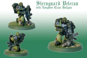 Sternguard Veteran with Longbow Class Boltgun by Pip-Faz