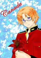 APH: Canada flower by undercreed-genesis