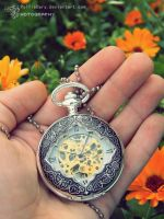 Pocket watch by PolfieDary