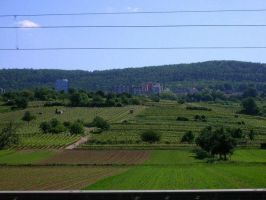 Country side. by sinkist