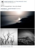 My First Monograph by Hengki24