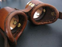 Brown Goggles - inside angle by passbyguy