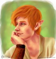 Iron Fey: Puck by mseregon