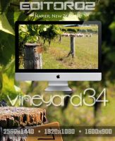 Vineyard34 Wallpaper by GavinAsh