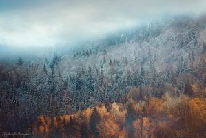 The Edge of Seasons by RaphaelleM