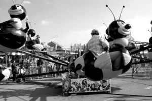 Bee ride by djPhotos