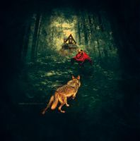 Little Red Riding Hood by rasin