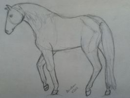 Mustang WIP - Completed Sketch by beaublanc