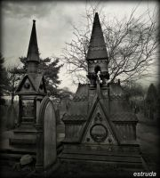 cemetery  Architecture by Estruda